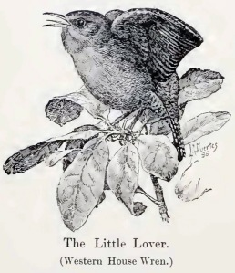 The Little Lover