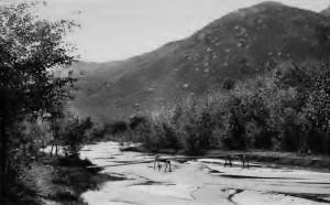 Bernardo River
